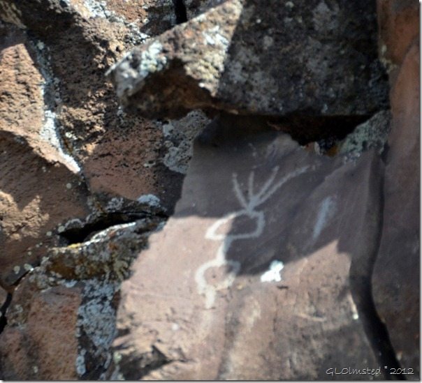 09 Nampaweap Rock Art Site BLM AZ (678x1024)