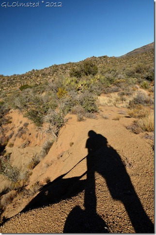 03 Gaelyn's shadow Weaver Mts Yarnell AZ (678x1024)