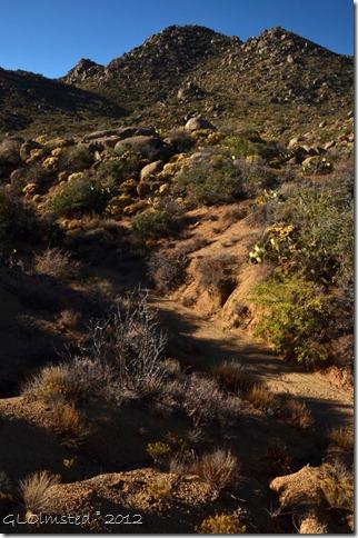 09 107 Dry wash Weaver Mts Yarnell AZ (678x1024)