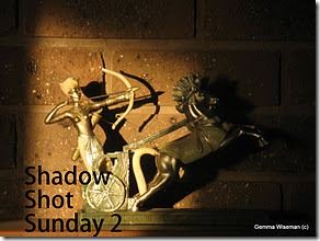 Shadow Shot Sunday 2 meme