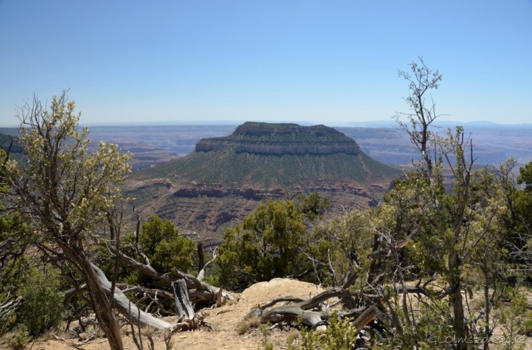 Steamboat Mountaint to South of Timp Point Kaibab National Forest Arizona