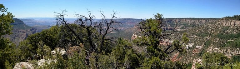 View West from Timp Point Kaibab National Forest Arizona
