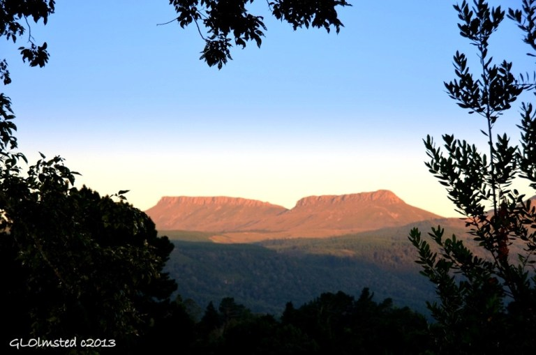 View of Hogsbacks from Never Daunted Self-catering Cottage Hogsback South Arica