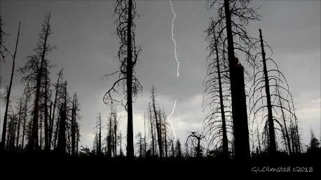 Lightning Walhalla Plateau North Rim Grand Canyon National Park Arizona