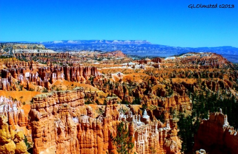 View from top of Wall Street Navajo Loop trail Bryce Canyon National Park Utah