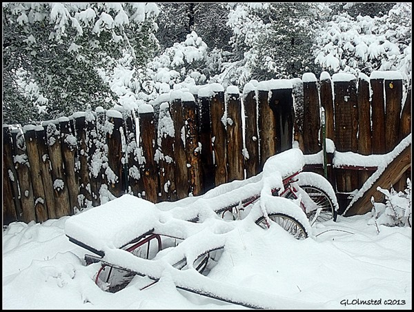 Snowy Yarnell Arizona