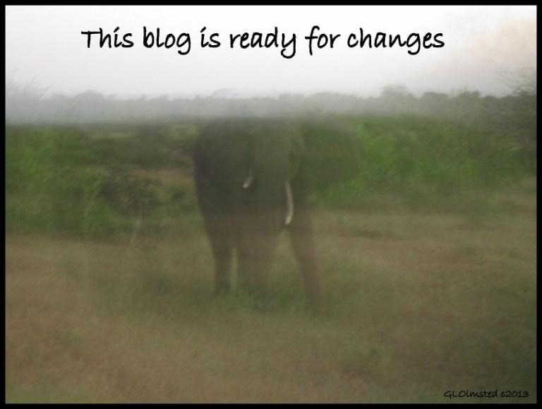 Elephant Night ride Kruger National Park South Africa