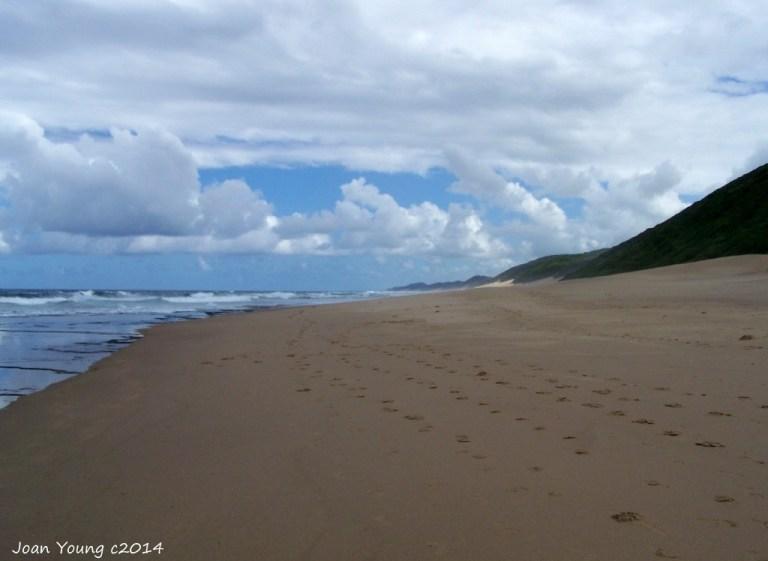 Beach Sodwana Bay iSimangaliso Wetland Park South Africa