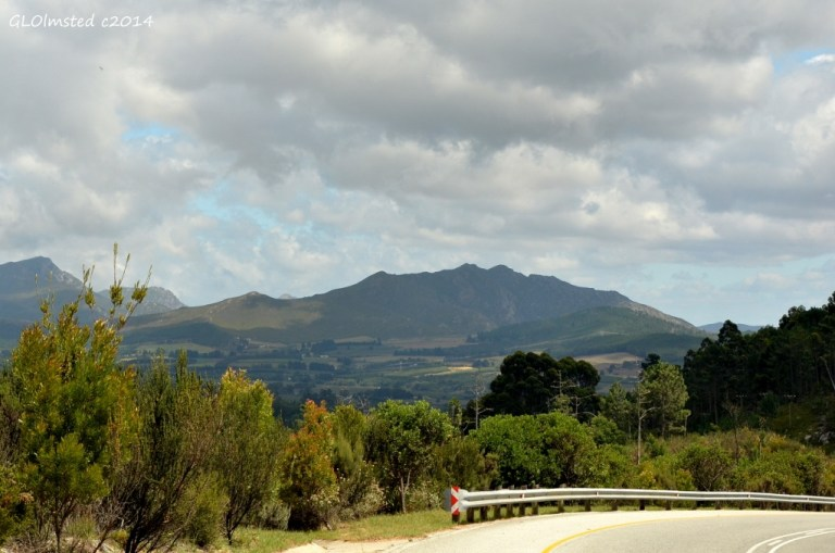Outeniqua Mts N12 north of George South Africa