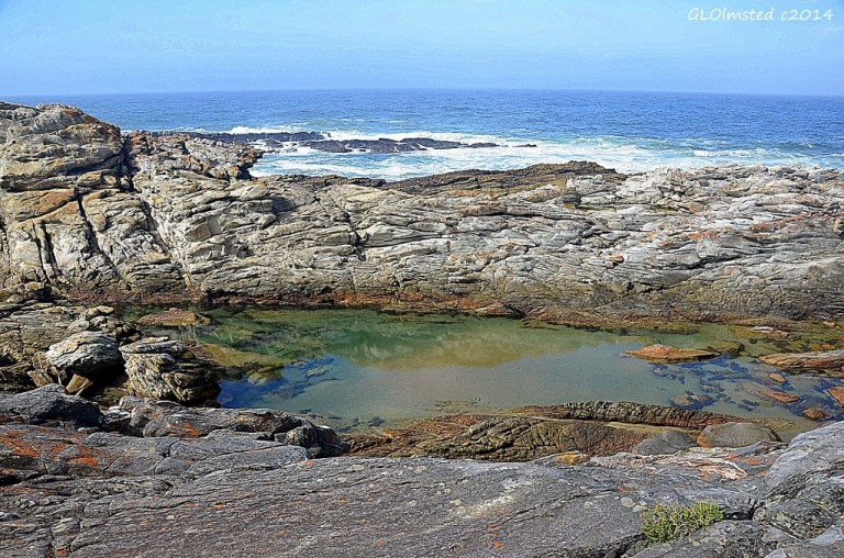 Indian Ocean view from Waterfall trail Tsitsikamma National Park South Africa