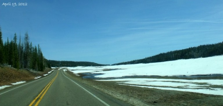 Snowy meadows SR67 north Kaibab National Forest Arizona