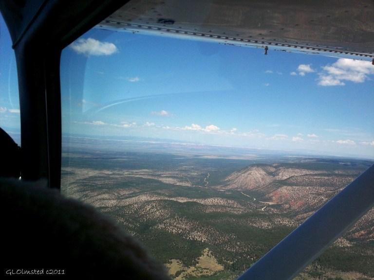 Flying over Kaibab National Forest Arizona