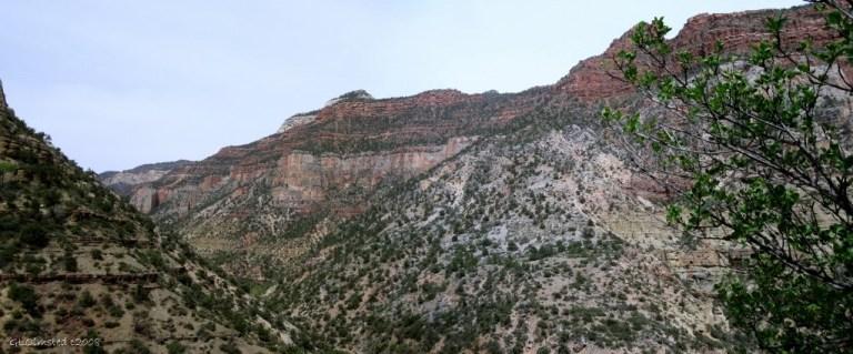 Bright Angel Canyon Grand Canyon National Park Arizona