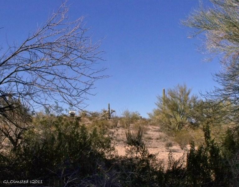 Desert off Freeman Road Arizona