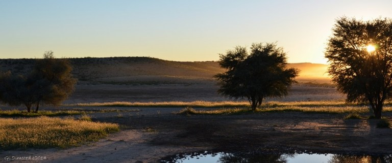 Sunrise Kgalagadi Transfrontier Park South Africa