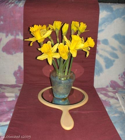 05 a3444 Daffodils day 2 Yarnell AZ fff62 (918x1024)