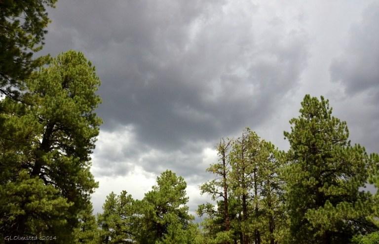 01 DSC_2621 Stormy sky NR GRCA NP AZ g (1024x659)