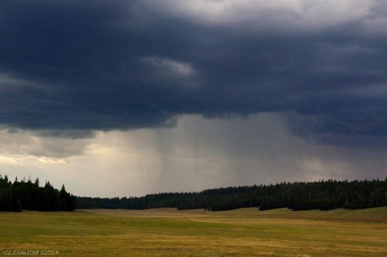 08 DSC_3628 Stormy sky above meadow Kaibab Lodge Kaibab NF AZ g (1024x678)