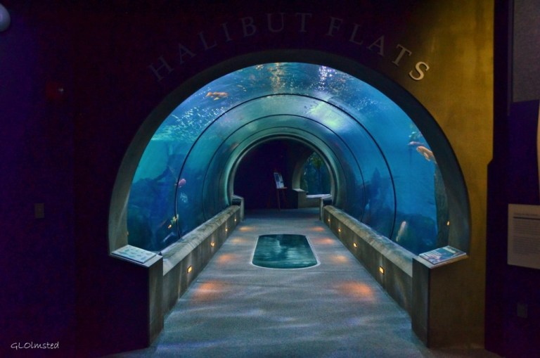 Halibut Flats entrance at Aquarium Newport Oregon