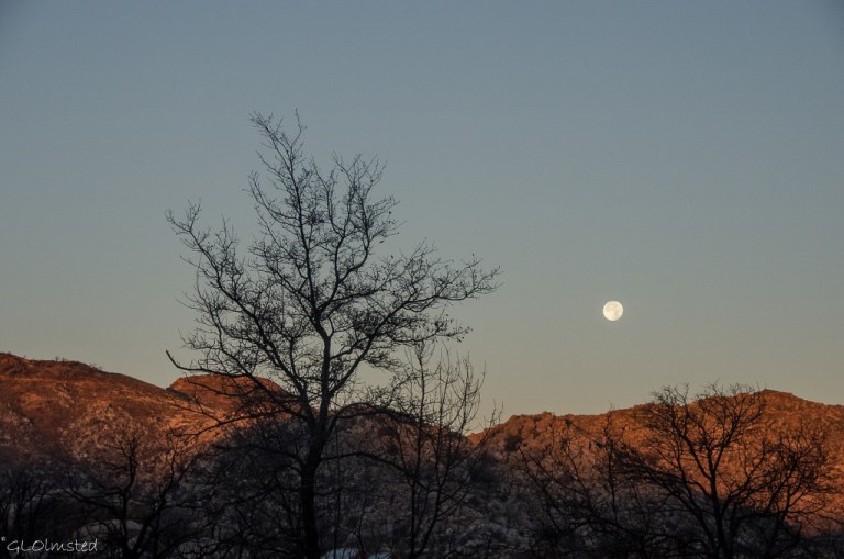 Moon set at sunrise over Weaver Mountains Yarnell Arizona