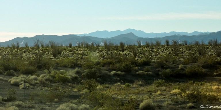 Wind farm as leaving Anza-Borrego Desert State Park California