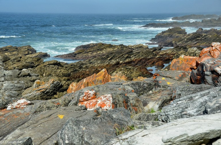 Rocky shoreline & Indian Ocean view Waterfall trail Tsitsikamma National Park South Africa
