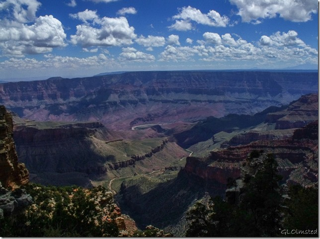 Colorado River from Walhalla overlook North Rim Grand Canyon National Park Arizona
