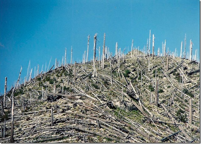 Blast zone above Meta Lake FS99 Mount Saint Helens National Volcanic Monument Washington