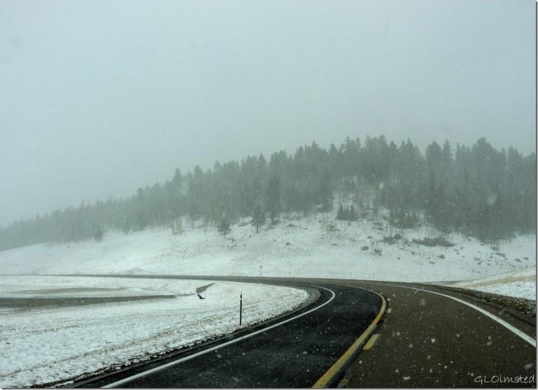 Snowing SR67 N Kaibab National Forest Arizona