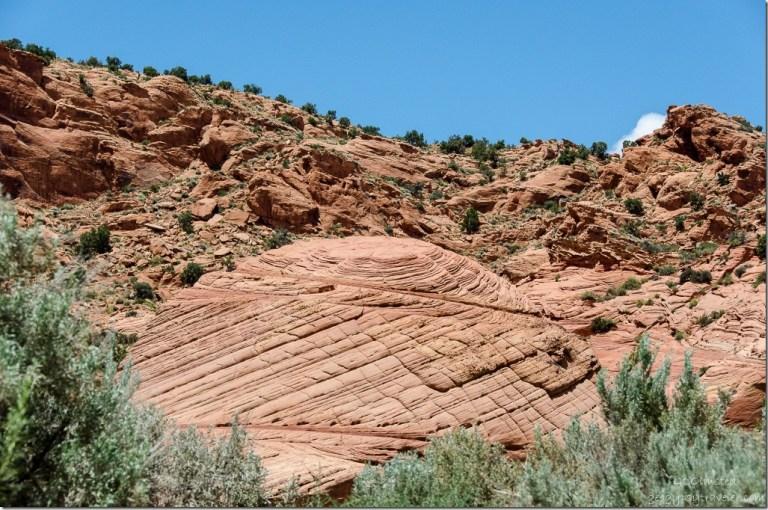 Bedding planes Upper Buckskin Gulch Paria Canyon/Vermilion Cliffs Wilderness area Utah