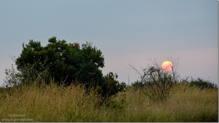 Sunrise Pilanesburg Game Reserve South Africa