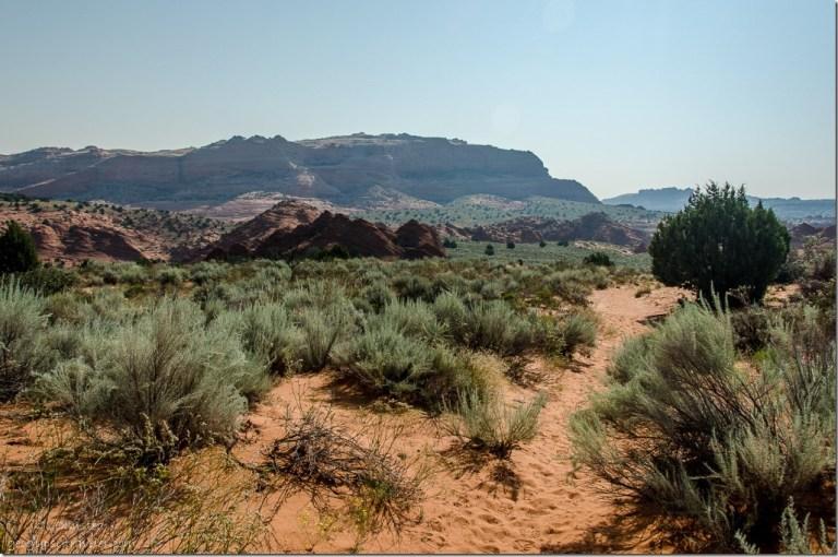 Coyote Buttes trail Paria Canyon-Vermilion Cliffs Wilderness Utah