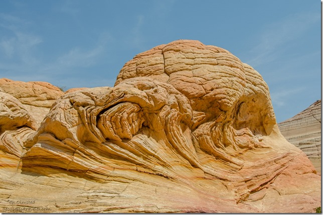 Sandstone mound above The Wave Paria Canyon-Vermilion Cliffs Wilderness Arizona