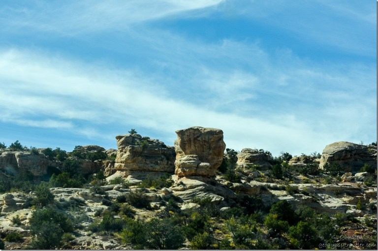 Eastern Cedar Mesa Utah