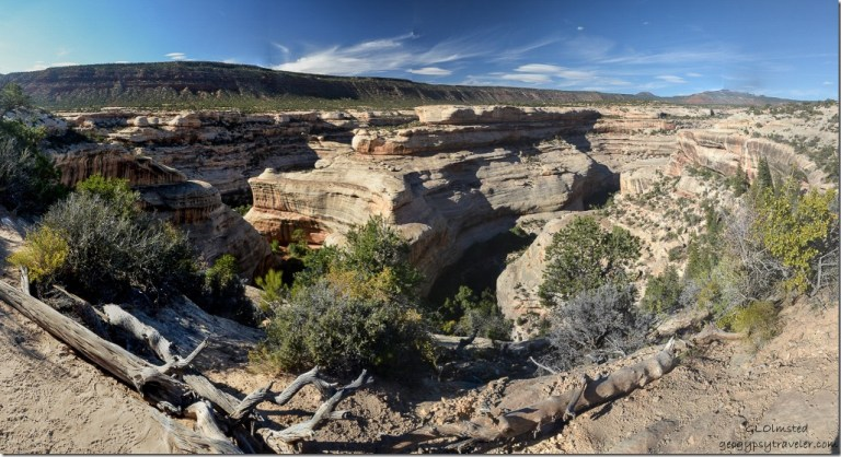 Horsecollar ruin Natural Bridges National Monument Utah