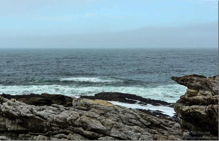 Rocky shoreline & Indian Ocean Waterfall trail Tsitsikamma National Park South Africa