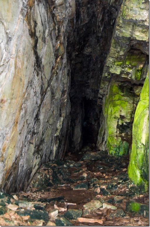 Inside cave Waterfall trail Tsitsikamma National Park South Africa