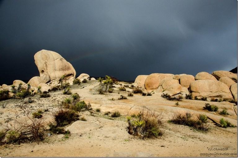 Rainbow White Tank campground Joshua Tree National Park California