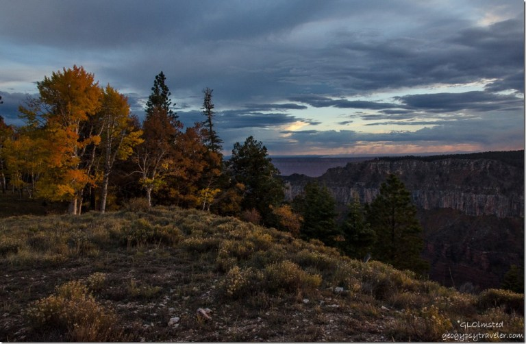 Fall colors & Sunset over Transept Canyon North Rim Grand Canyon National Park Arizona