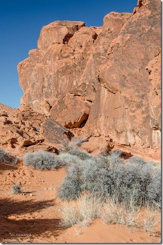Side canyon with petroglyphs by Atlatl Rock Valley of Fire State Park Nevada
