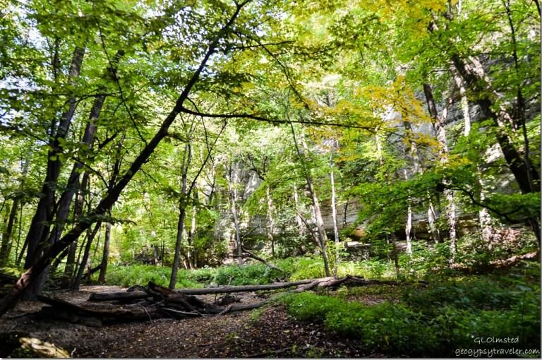 Kaskaskia trail Starve Rock State Park Illinois