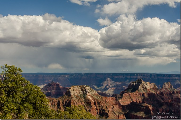 Rain clouds over canyon North Rim Grand Canyon National Park Arizona
