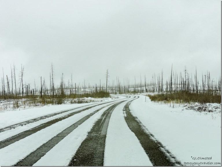 Snowy road 2006 Warm Fire SR67 North Kaibab National Forest Arizona
