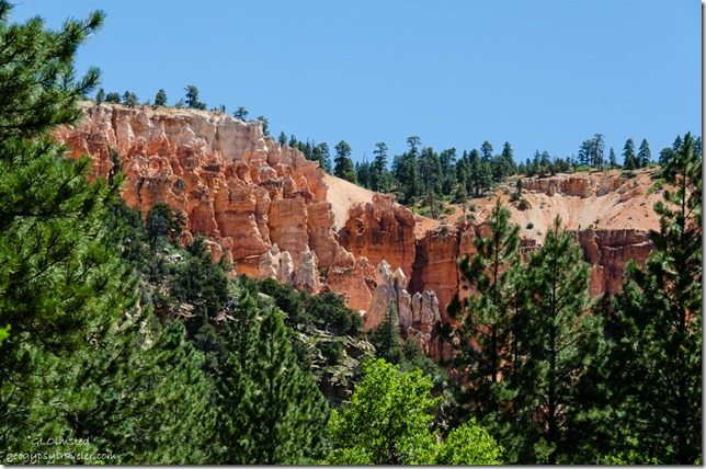 Hoodoos Stout Canyon FR063 North Dixie National Forest Utah
