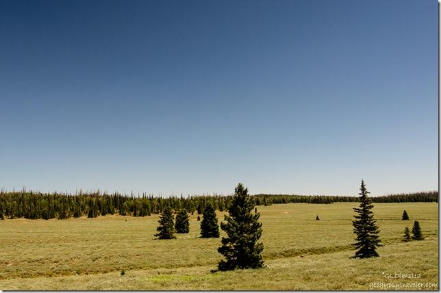 Meadow SR14 Utah