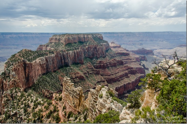 Wotans Throne Cape Royal North Rim Grand Canyon National Park Arizona