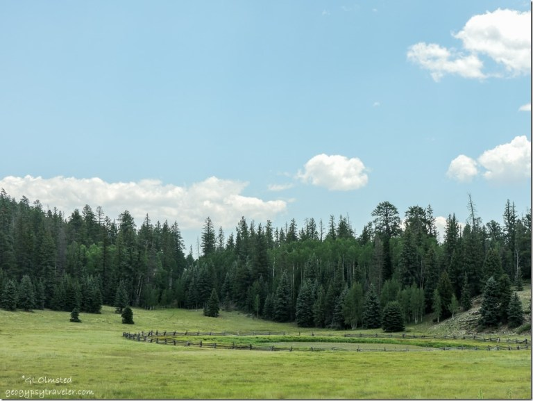 Crane Lake SR67 Kaibab National Forest Arizona