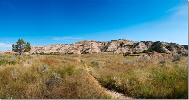 Theodore Roosevelt National Park paths to follow by Laura Thomas NPS 3306F9FB-1DD8-B71B-0B560532EBC15E0A