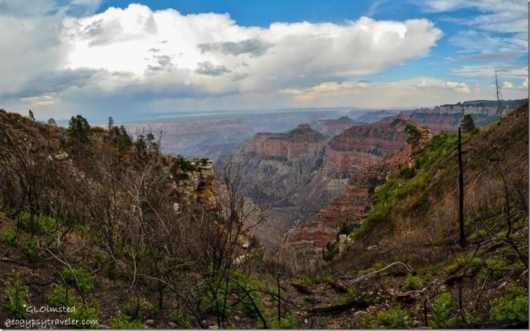 View SE from Ken Patrick trail North Rim Grand Canyon National Park Arizona