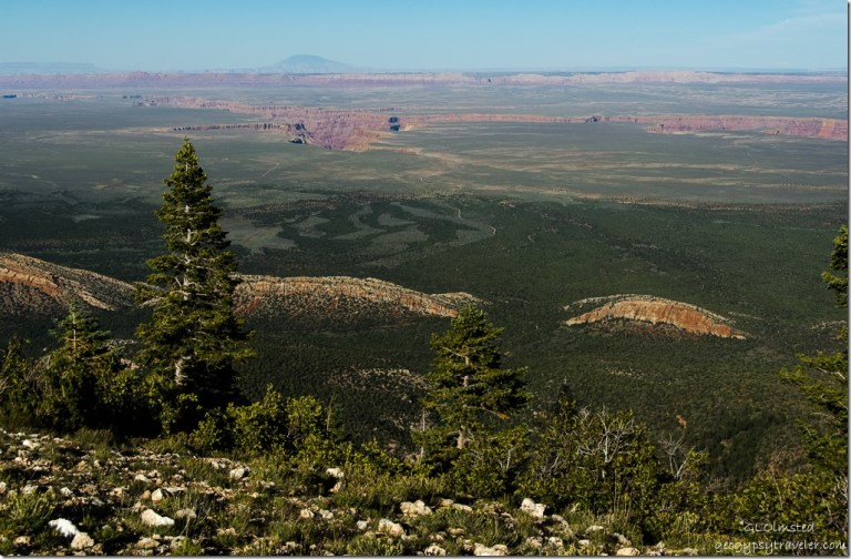 Marble Plateau & Canyon Echo Cliffs Navajo Mountain from Marble View Kaibab Kaibab National Forest Arizona